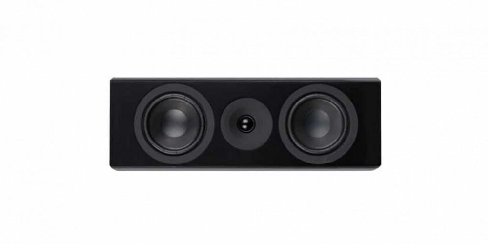 SYSTEM AUDIO Legend 10.2 Center Silverback